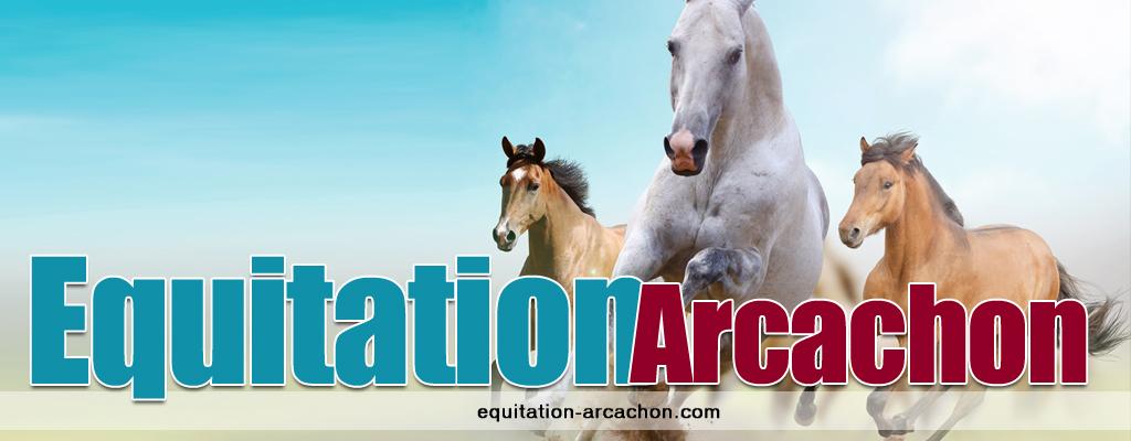 Equitation arcachon